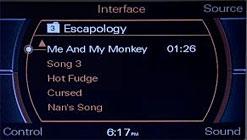 Audi Music Interfcae