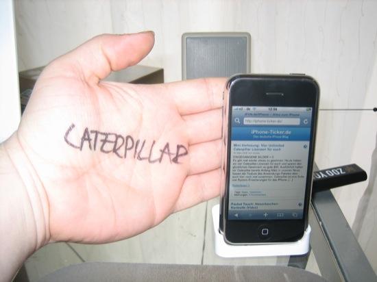 catze2.jpg