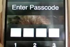 passcodebug.png