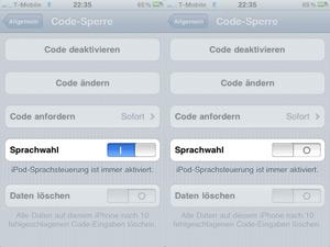 passcodesprache.jpg