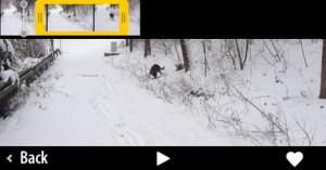 adobe-videobite