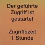 zugriff-icon